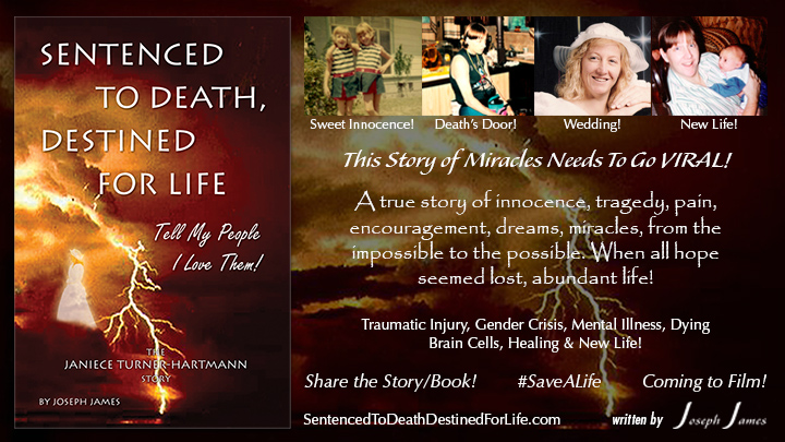 Sentenced To Death Destined For Life - The Janiece Turner-Hartmann Story - by Joseph James
