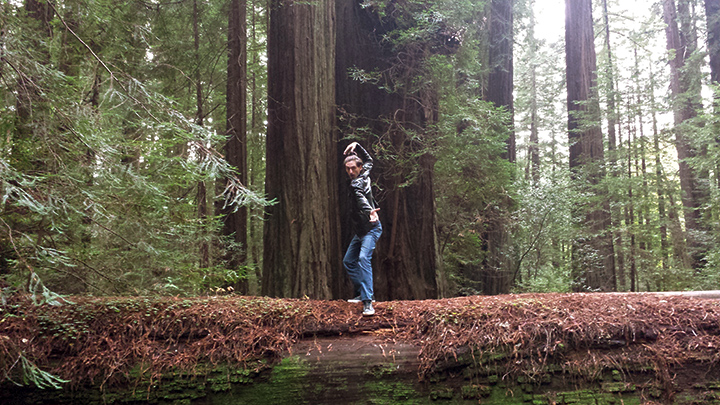 Redwood Forest | DeeZee - Daniel Hartmann Dance | Follow Your Dreams Tour | Joseph James