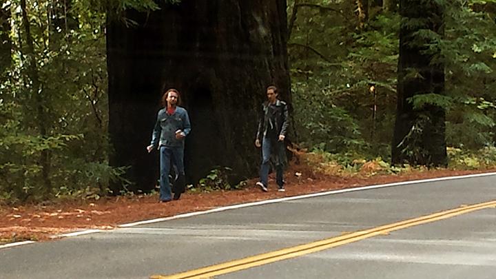 Redwood Forest | Follow Your Dreams Tour | Joseph James Music